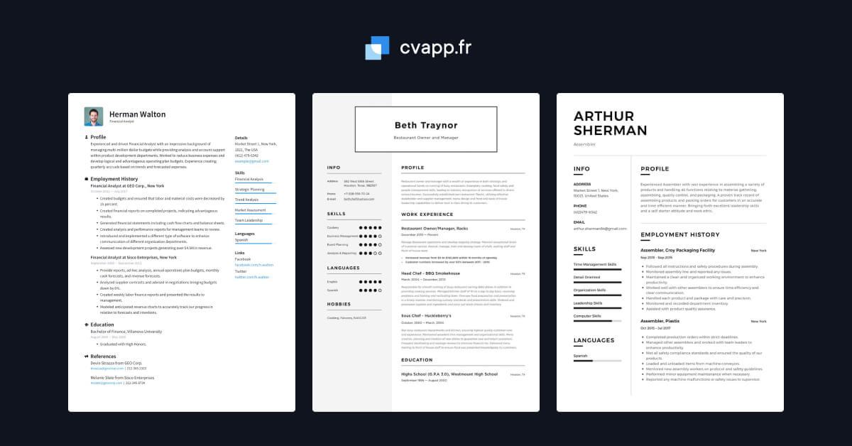 exemples de cv  u00b7 cvapp fr